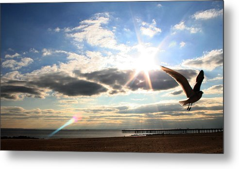 Coney Island Metal Print featuring the photograph Coney Island Flare by Jason Hochman