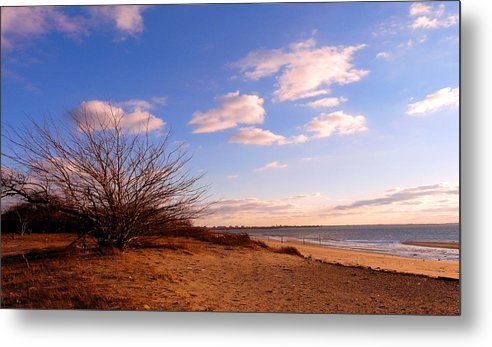 Landscape Metal Print featuring the photograph Listen To The Quiet by Kendall Eutemey