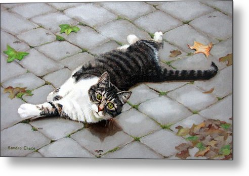 Cat Metal Print featuring the painting You Called? by Sandra Chase