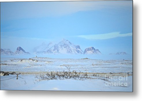 Landscape Metal Print featuring the photograph Untitled by Eric Reger