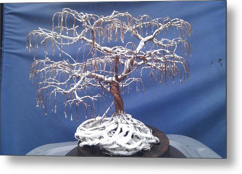 Winter Metal Print featuring the mixed media Cinabonsi by Brian Boyer