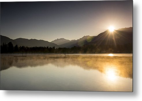 Duck Metal Print featuring the photograph Golden Morning by Aaron Bedell