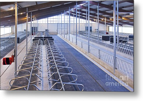 Agricultural Metal Print featuring the photograph Row Of Cattle Cubicles by Jaak Nilson