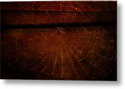 Spider Web Metal Print featuring the photograph Dark Web by Robin Dickinson