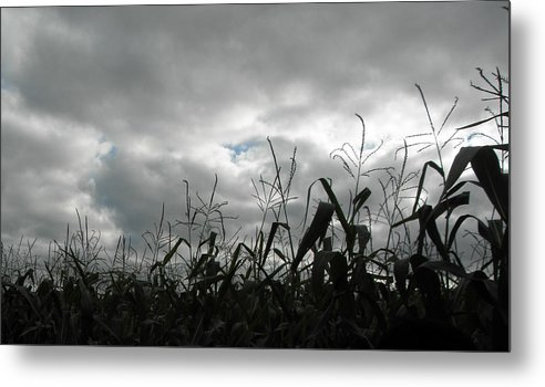 Clouds Metal Print featuring the photograph Eerie Field by Karen Jordan