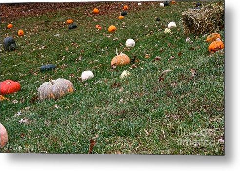 Outdoors Metal Print featuring the photograph Pumpkins by Susan Herber