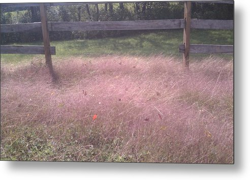 Fall Metal Print featuring the photograph Purple Haze Of Fall by Paula Deutz