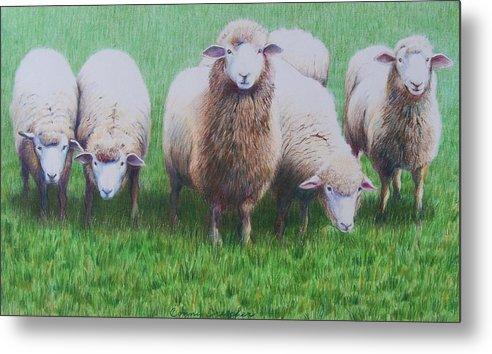 Sheep Metal Print featuring the mixed media Friends by Constance Drescher