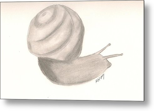Snail Metal Print featuring the drawing Snail by Kristen Hurley