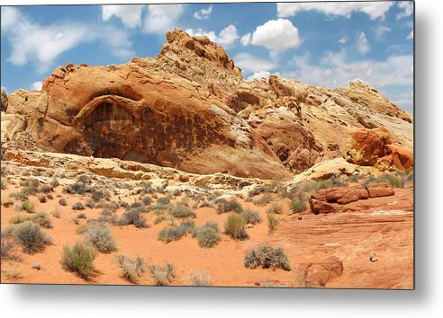 Landscape Metal Print featuring the photograph Valley Of Fire by Mary Lane