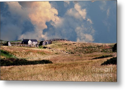 Scenic Tours Metal Print featuring the photograph Moors Of Block Island by Skip Willits