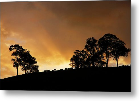 Sunset Metal Print featuring the photograph Rural Glory by Mike Dawson