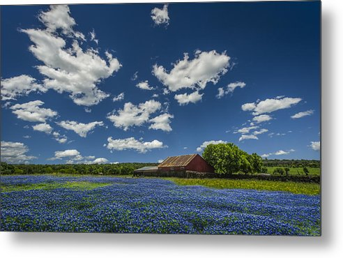 Old Barn Metal Print featuring the photograph Texas Springtime by Chelsea Stockton