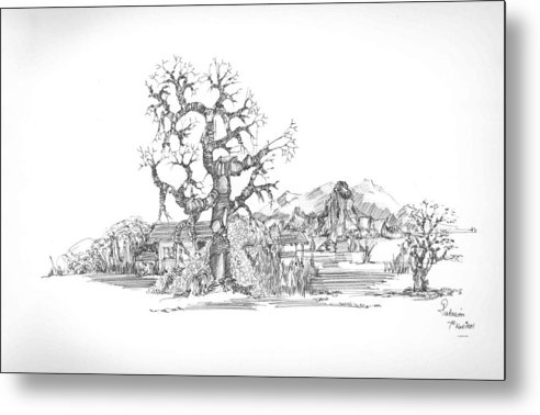 Landscape Metal Print featuring the drawing Tree And Some Rocks by Padamvir Singh