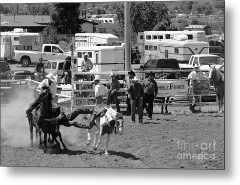 Rodeo Metal Print featuring the photograph Steer Wrestling by Susan Chandler