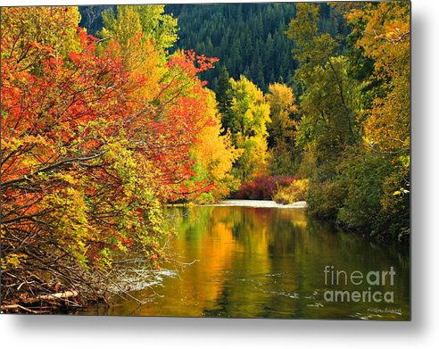 Creek Metal Print featuring the photograph On Nason Creek by Winston Rockwell