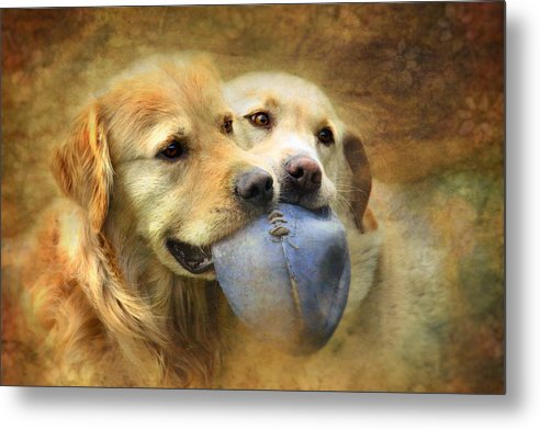 Dog Metal Print featuring the photograph Mates by Trudi Simmonds