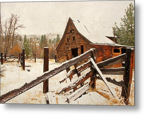 Barns Metal Print featuring the photograph Surviving The Elements by Donna Kennedy
