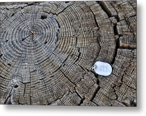 111 Metal Print featuring the photograph 111 by Randal Bruck