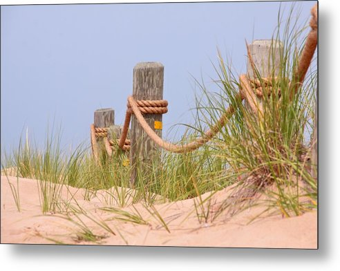 State Park Metal Print featuring the pyrography 9741 Pilings by Kathy Wesserling