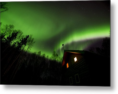 Alaska Metal Print featuring the photograph Alaska Living by Amber Fite