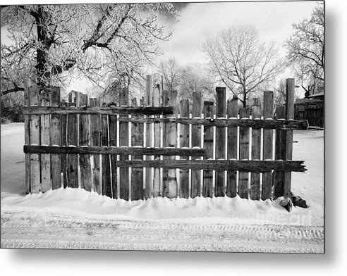 Old Metal Print featuring the photograph old patched up wooden fence using old bits of wood in snow Forget Saskatchewan by Joe Fox