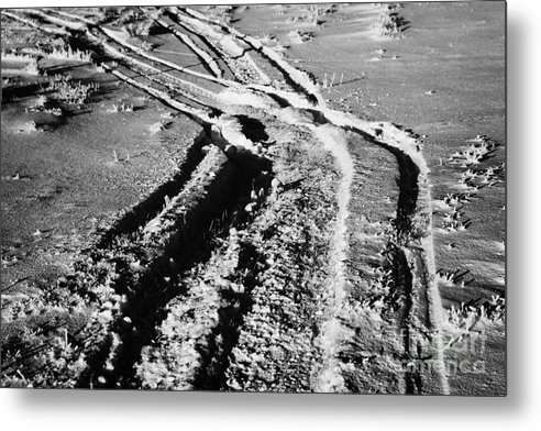 Snowmobile Metal Print featuring the photograph snowmobile tracks in snow across frozen field Canada by Joe Fox