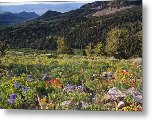 Wasatch Metal Print featuring the photograph Wasatch Mountains Of Utah by Douglas Pulsipher