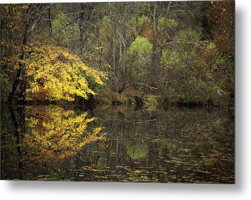 Autumn Metal Print featuring the photograph Autumn On The Pond by Rob Travis