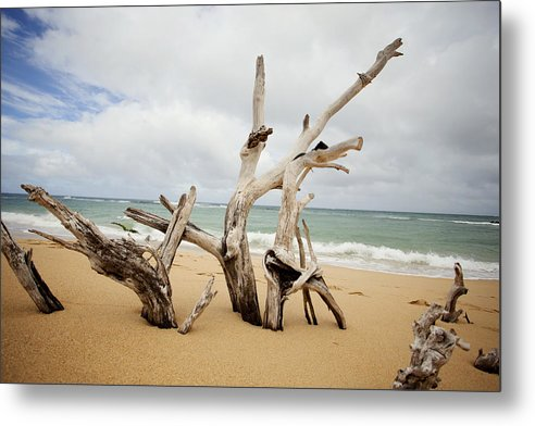 Nature Metal Print featuring the photograph Sculptures By The Sea by Jama Pantel