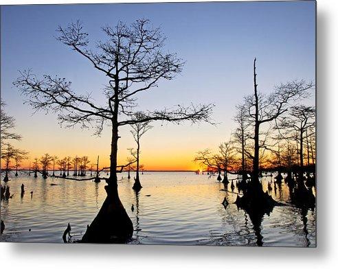 Mattamuskeet Metal Print featuring the photograph Sunset On Lake Mattamuskeet by Rob Travis