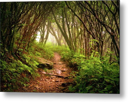 Hiking Metal Print featuring the photograph Appalachian Hiking Trail - Blue Ridge Mountains Forest Fog Nature Landscape by Dave Allen