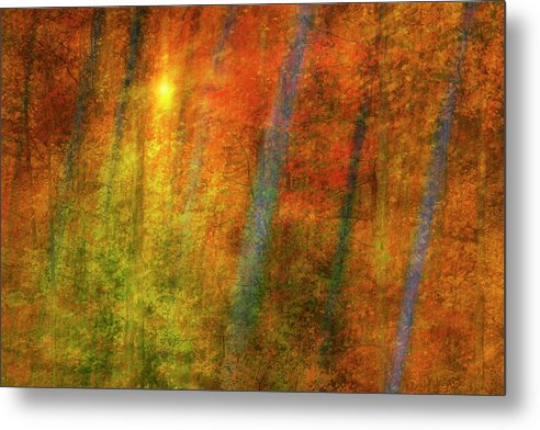 Woods Metal Print featuring the digital art Autumn Woods by Guy Crittenden
