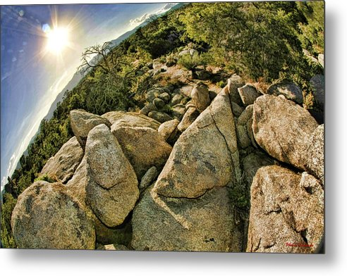 Metal Print featuring the photograph Cactus Rock by Blake Richards