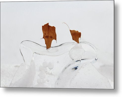 Ice Metal Print featuring the photograph Frozen In Time by Carolyn Odell