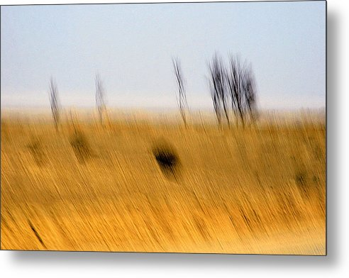 Landscape Metal Print featuring the photograph Mirage by Robert Shahbazi
