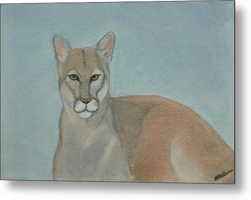 Mountain Lion Metal Print featuring the painting Mountain Lion - Pastels - Color - 8x12 by B Nelson