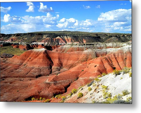Desert Metal Print featuring the photograph Painted Desert by Barry Shaffer