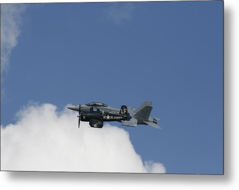 Raptor Metal Print featuring the photograph Raptor by Bill Linhares
