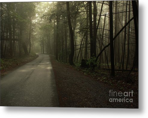 Mountain Metal Print featuring the photograph Shrouded Path by J L Gould