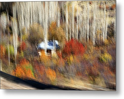 Cottages Metal Print featuring the photograph Surrounded by Robert Shahbazi