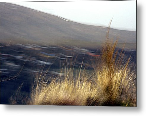 Landscape Metal Print featuring the photograph Survival by Robert Shahbazi