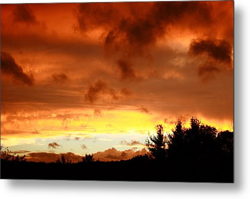 Sunset Metal Print featuring the photograph The Red Planet by Carol Hicks