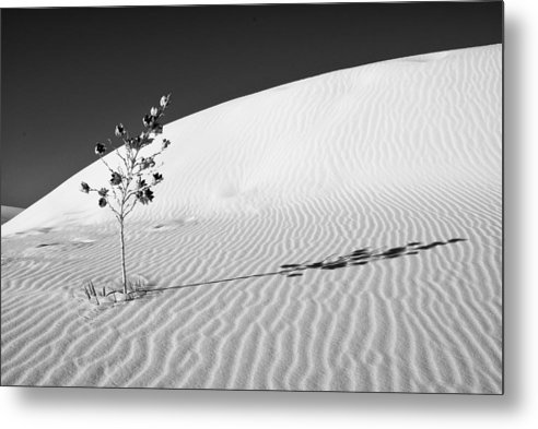 White Sands National Monument Metal Print featuring the photograph White Sands 4 by Lou Novick