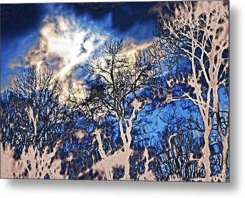 Natural Highlights Metal Print featuring the photograph Natural Highlights by Kellice Swaggerty