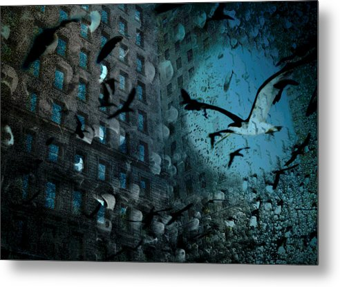 Digital Photography Metal Print featuring the photograph Birds And Building by Tony Wood