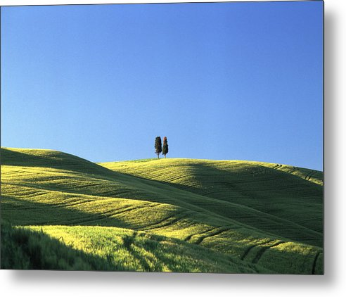 Tuscany Metal Print featuring the photograph Tuscan Evening by Michael Hudson