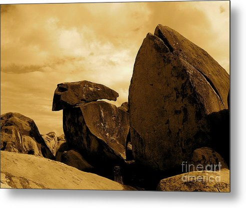 Rocks Metal Print featuring the photograph Whale Wolf And Turtle by Sergio Geraldes