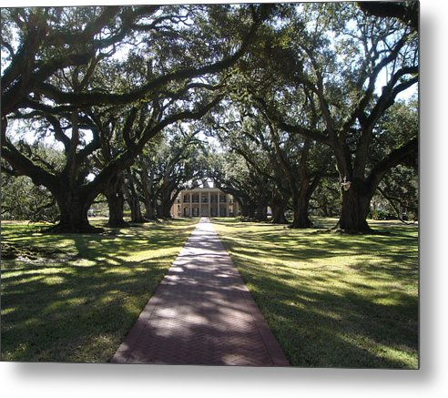 Plantation Metal Print featuring the photograph Pathway by Karla Kernz