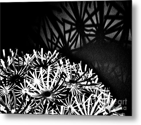 Black And White Photography Metal Print featuring the photograph Stars Shadow by Lori-Anne Fay